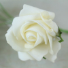 single ivory foam rose stem