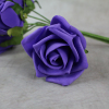 Deep Purple Foam Rose