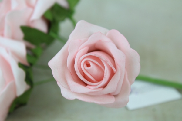 single pink foam rose stem from the bunch