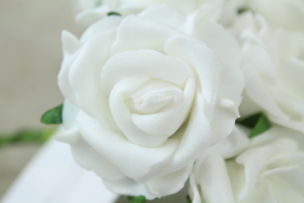 single rose from the bunch of white foam roses