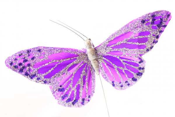 Purple Butterfly with 11cm with grey body on steel wire stem.