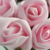 Baby Pink Foam Roses Bunches Of 12