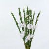 White Heather Bunch. Card Craft