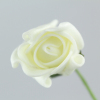 Single white Rolled Rose buds with next day delivery.