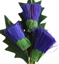 Quality thistle stems packed in sleeves of 6.