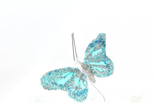The wonderful and vibrant Turquoise smaller Butterfly