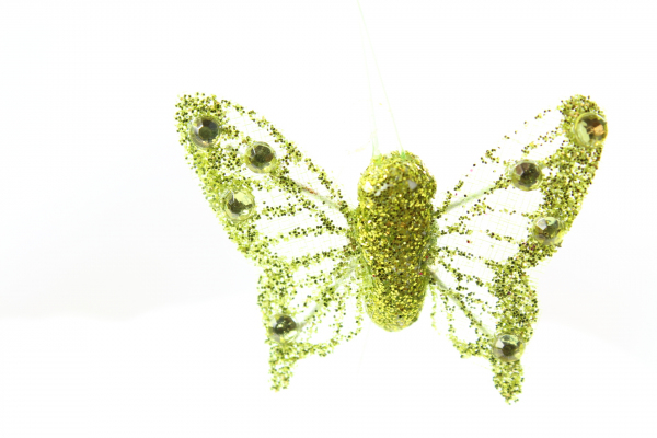 The golden green butterfly from WFC. In stock in England.