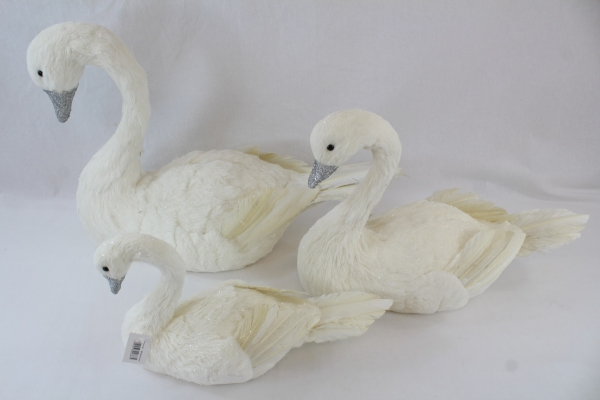 3 Size Variations Of our WFH swans