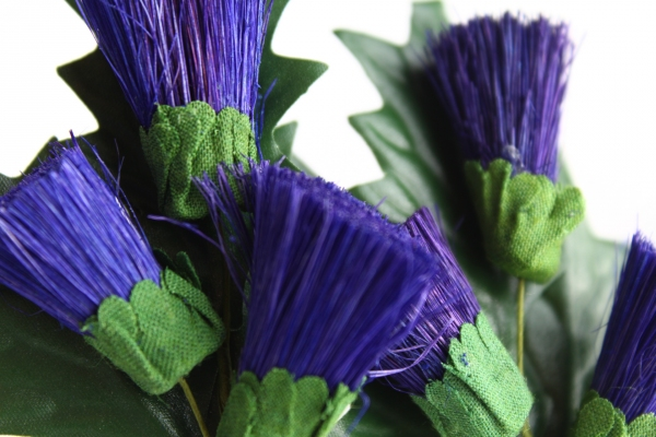 A closer look at our thistle stems in a deep purple