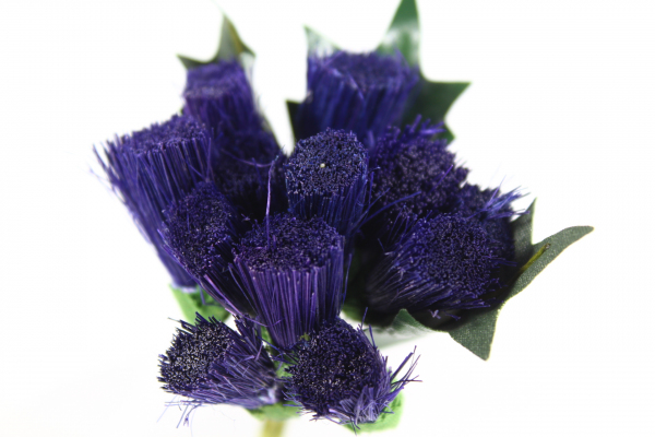 Larger Thistle head bunch in dark Purple