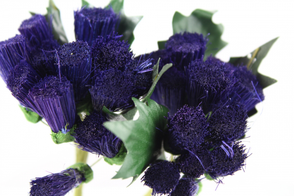 Decoration purple Thistle bunches for decorations
